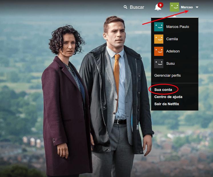Netflix - Acessar conta