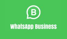 Chegou o WhatsApp Business