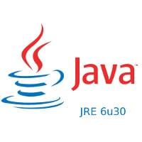 Java JRE 6u30 13